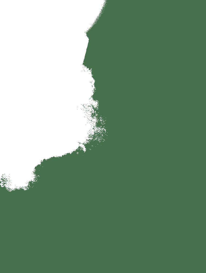 Elma Hogeboom | Sustainable Art